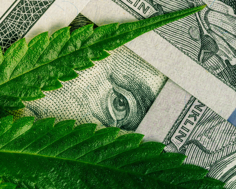 """Cannabis Is """"The New Tech"""" Right Down to the Bubble"""