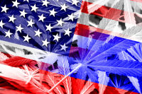 Which 5 States Will Legalize Recreational Cannabis Next?